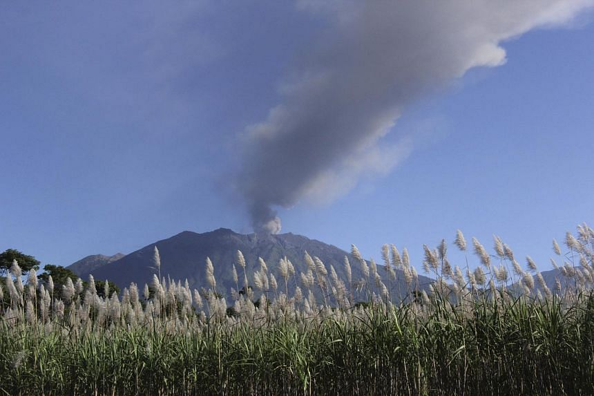 Ash and smoke from Mount Raung seen from the village of Sumber Arum, East Java province, on July 4.