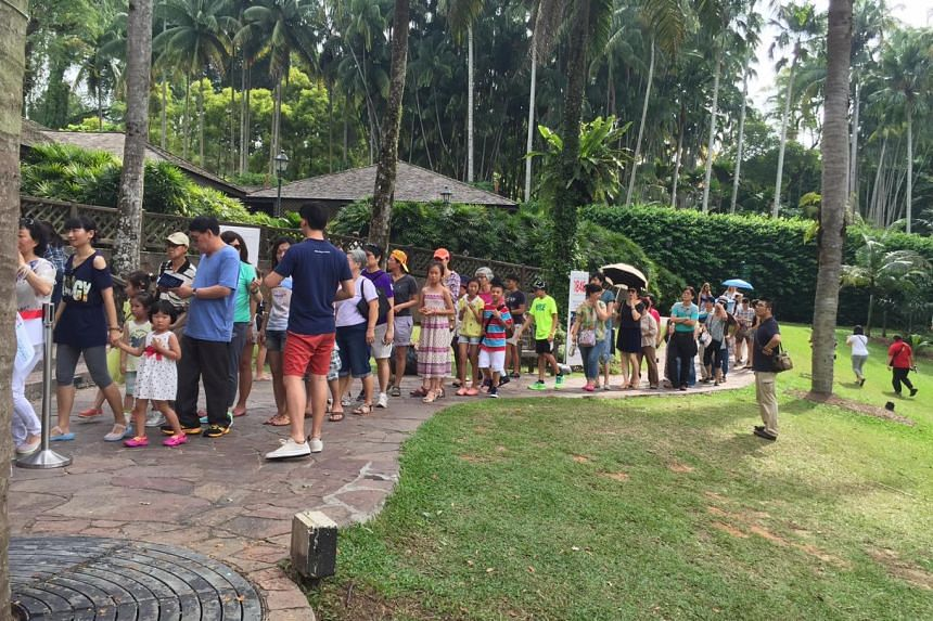 Concert-goers form a queue to get their ST170 Treats at the Singapore Botanic Gardens on Saturday evening.