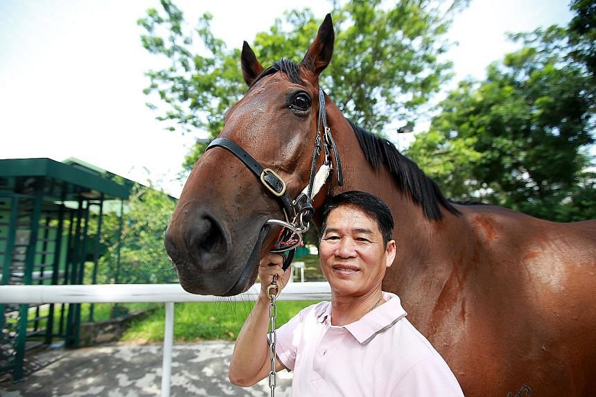 Leslie Khoo, who moved to Malaysia to pick up skills as a trainer, says the job comes with many challenges, from buying good horses to working with the horse owners.