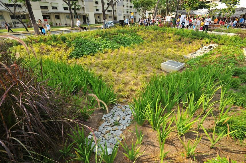 A rain garden that collects and treats rainwater runoff using specially selected plants and a filter media (soil layer) before it is discharged into the river, along ABC Waters @ Kallang River.