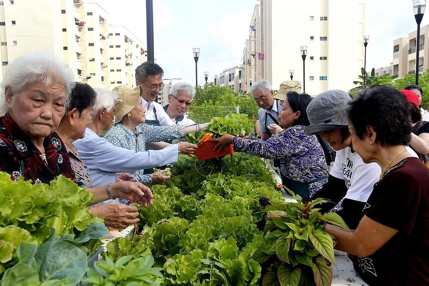 A garden gathering at Sky Garden at Jurong Central yesterday. The garden is designed to be elder- and wheelchair-friendly.