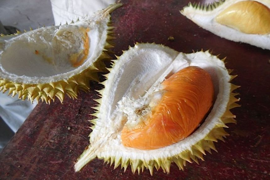 ORGANIC DRAW: Ang hehs which are so small that sometimes one durian contains only one pip.