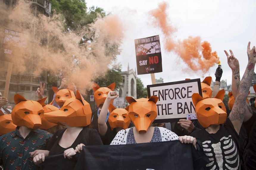 Demonstrators wear fox masks during an anti-fox hunting demonstration in London.