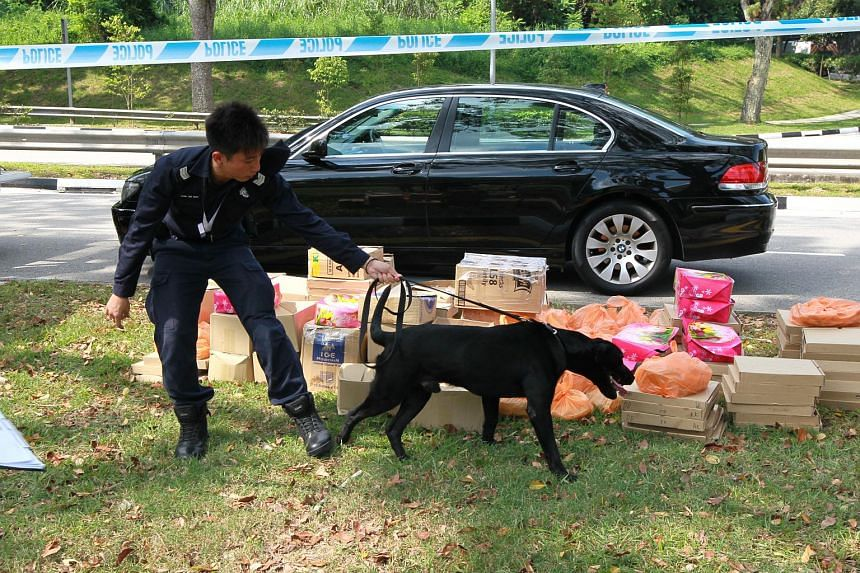A police dog sniffing boxes at the Tuas checkpoint.