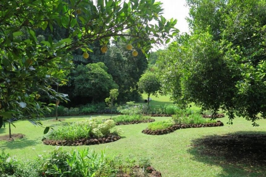 Spice Garden, a new attraction at the Istana.