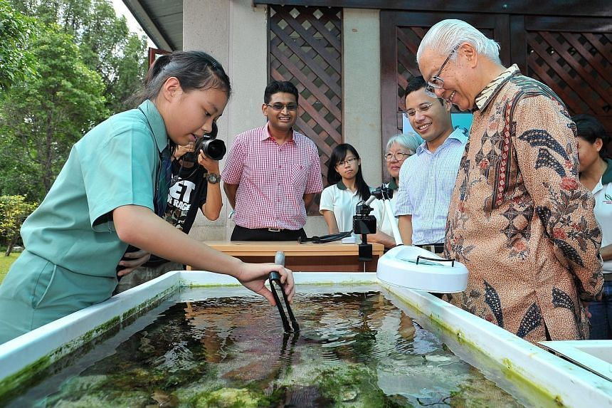 Sec 3 student Stephanie Aw (left), 15, from Ang Mo Kio Secondary School, pointing out a velcro crab (Camposcia retusa) to President Tony Tan, at the viewing pool of Sisters' Islands Marine Park Public Gallery yesterday. The 30 sq m gallery showcases