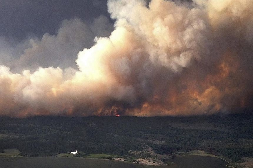 Smoke rising from a huge wildfire near Puntzi Lake in British Columbia (above), and a fireman spraying water on smouldering trees on Highway 11 in Alberta, Canada.