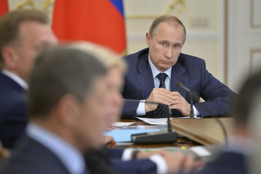 Russian President Vladimir Putin has criticised the idea of setting up a UN tribunal over the MH17 crash, saying such measures were premature.