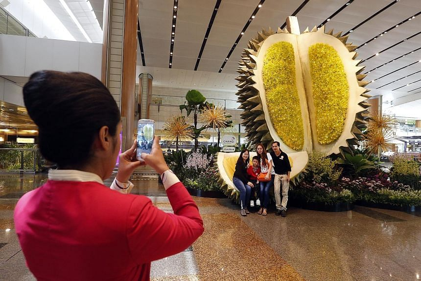 Visitors at Changi Airport posing in front of the 6m-tall durian topiary at Terminal 2. The giant-sized replica of the king of fruits is one of 50 attractions forming an SG50 trail that was launched yesterday. The trail features local icons, dishes a