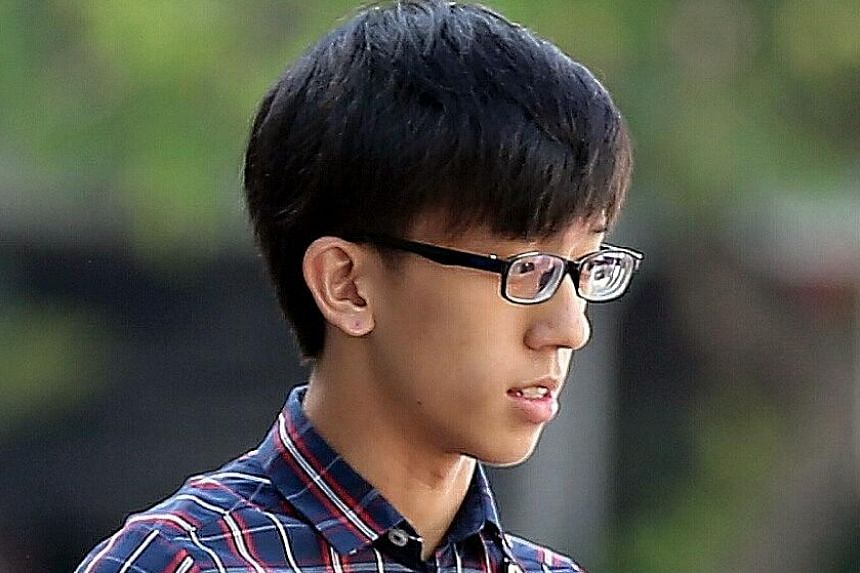 Daryl Lim Jun Liang pleaded guilty earlier this year to one charge of voluntarily causing hurt.