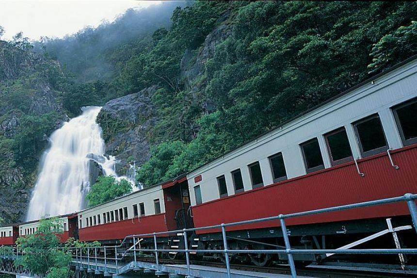 Take the Kuranda Scenic Railway (above) or Skyrail Rainforest Cableway from Cairns to Kuranda.