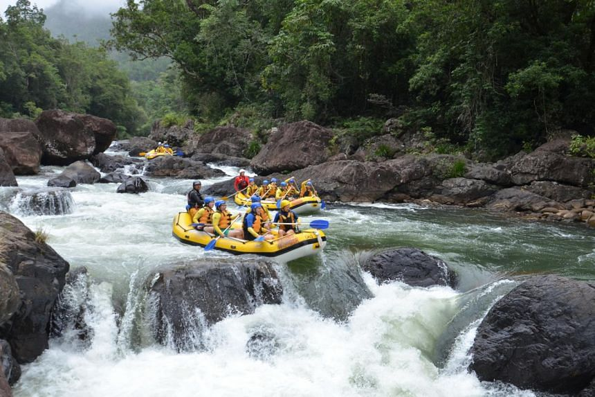 Go on a day-long whitewater rafting ride (above) about 10 to 15km down the Tully River or dive at Agincourt Reef, about an hour by fast catamaran from Port Douglas.
