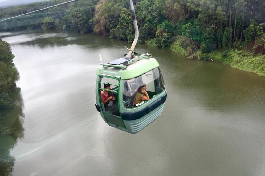 Take the Kuranda Scenic Railway or Skyrail Rainforest Cableway (above) from Cairns to Kuranda.