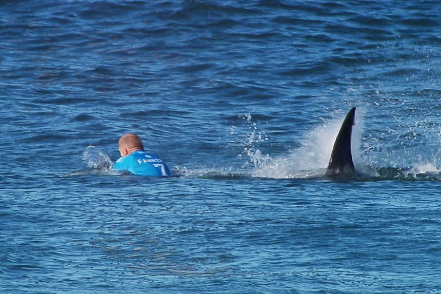 Mick Fanning being attacked by a shark during the final of the JBay surf Open on July 19, 2015.