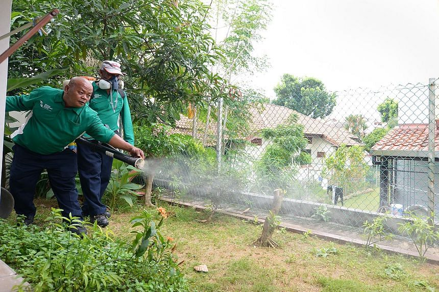 National Environment Agency workers spraying insecticide to kill the larvae of the Aedes mosquito in a garden of a private property.