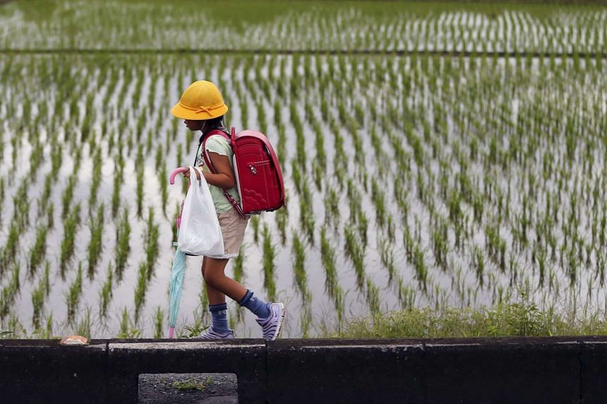 An elementary school student walks past a rice paddy in Kazo, north of Tokyo, Japan.
