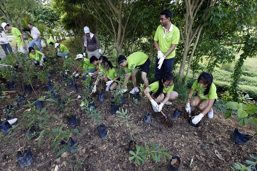 Students from Ang Mo Kio Secondary School were among the volunteers who helped to plant more than 300 shrubs of 15 different species in Bishan-Ang Mo Kio Park's butterfly habitat yesterday. With them is their school principal (third from right), Mr A