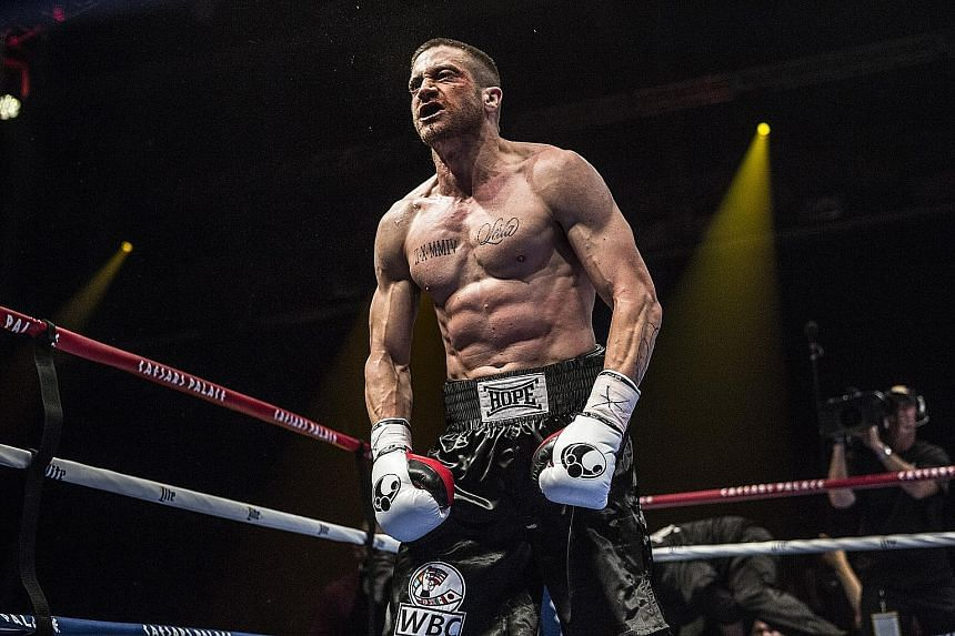Jake Gyllenhaal's sculpted body in Southpaw shows he has done his homework. Boxing movies, with their unsentimental hitting wrapped in sentimental tales, are irresistible.