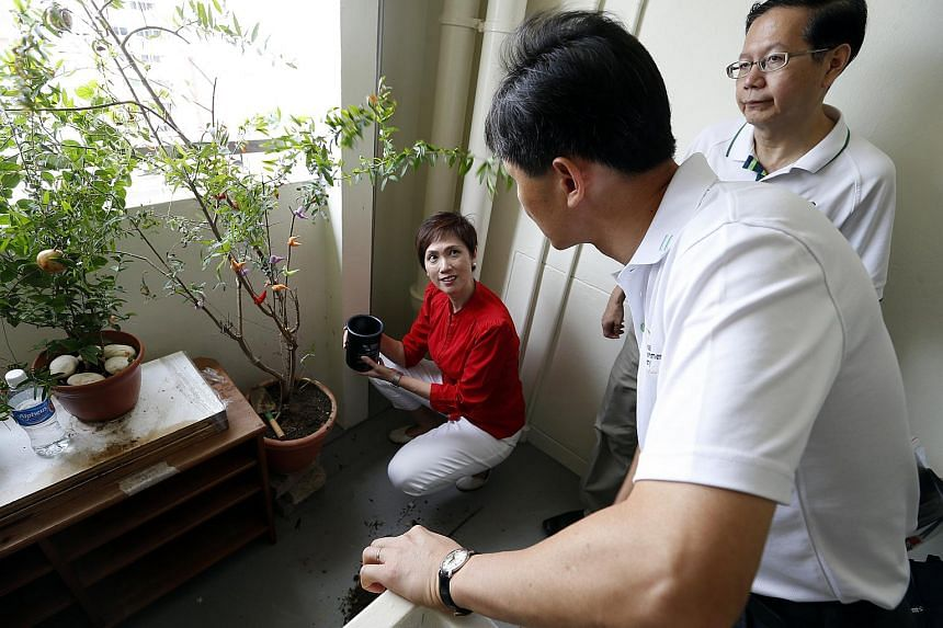 Senior Minister of State for Finance and Transport and Bishan-Toa Payoh MP Josephine Teo visiting homes in Bishan North Street 22 on July 26, 2015 to update residents on the dengue situation in their neighbourhood.