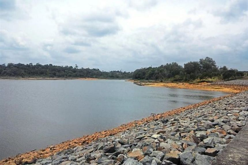 The Sungei Lebam dam in Kota Tinggi, one of two dams involved in a dispute over territorial concerns.