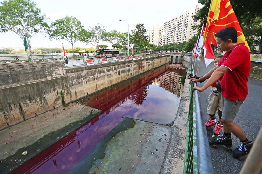 Water in the canal at Jurong West St 62 turned red on Sunday afternoon.