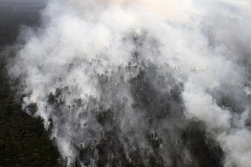 A forest fire in South Sumatra, Indonesia. The agreement would help identify firms responsible for the grounds on which fires are started.