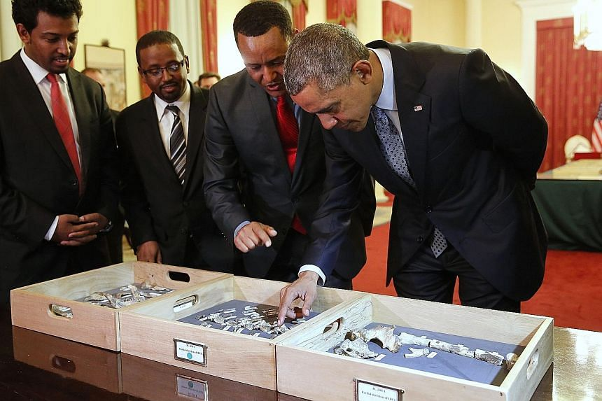 Dr Zeresenay Alemseged Lemseged of the California Academy of Sciences showing President Barack Obama the fossilised vertebra of Lucy, an early human, at the National Palace in Addis Ababa, Ethiopia. Lucy is the most famous fossil of the species Austr