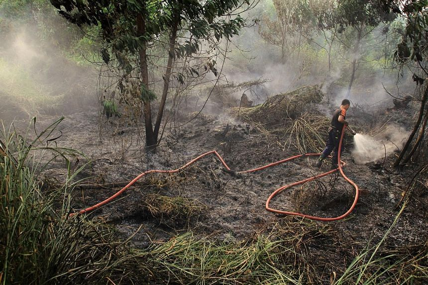A forest fire in South Sumatra (above), seen from a helicopter belonging to Indonesia's National Disaster Management Agency. A firefighter (left) putting out a fire in Pekanbaru, Sumatra.