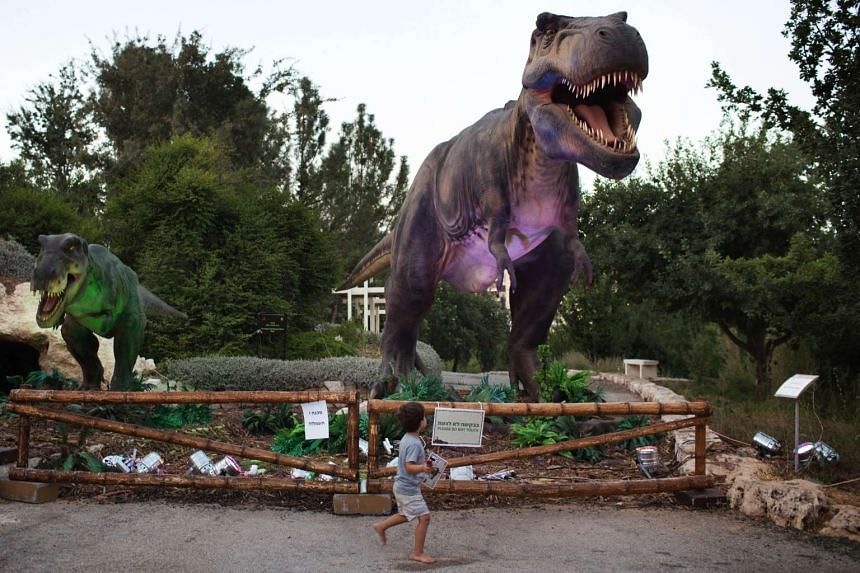 A child walks past a replica of a Tyrannosaurus during a visit to the Dinosaur exhibit at the at Jerusalem Botanical Gardens on July 27, 2015, as part of the summer cultural activities scheduled in the city.