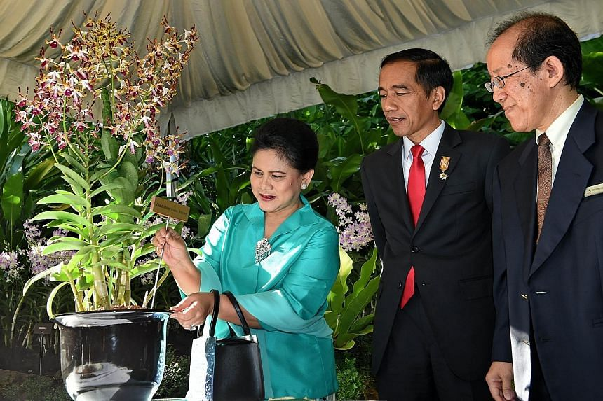 Indonesian President Joko Widodo and his wife Iriana with the Dendrobium Iriana Jokowi, an orchid named after them, during their visit to the National Orchid Garden yesterday morning. With them is National Parks Board deputy chief executive officer L