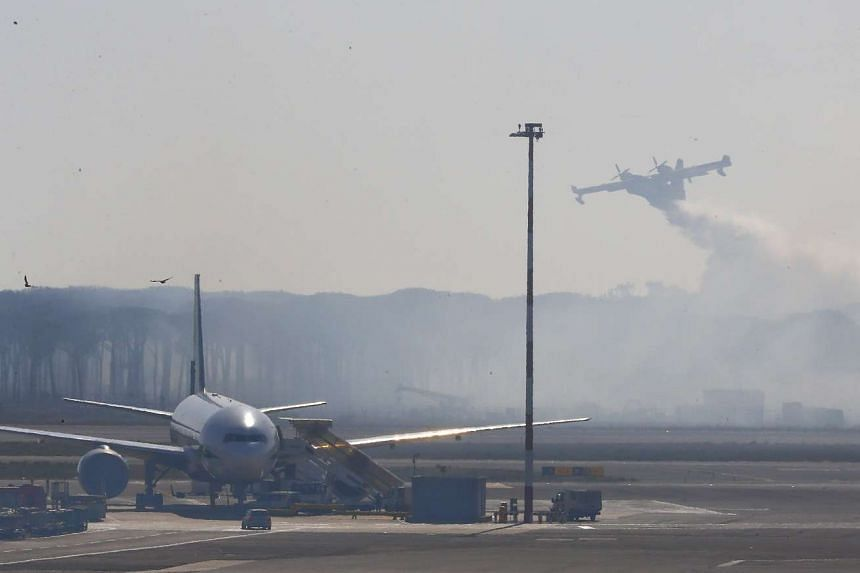 A Canadair firefighting aircraft from Italy drops water over a forest near Fiumicino International airport in Rome.