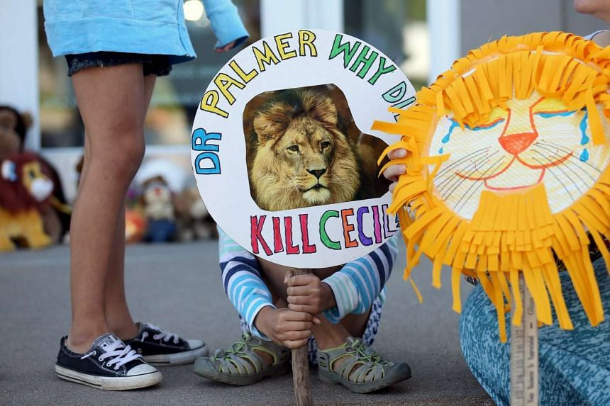 Piper Hoppe, 10, holding a sign at the doorway of River Bluff Dental clinic in protest against the killing of Cecil, a famous lion in Zimbabwe.
