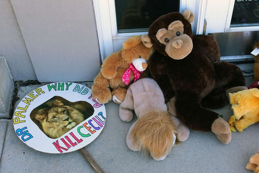 Signs and stuffed toy animals are placed at a memorial for Cecil the lion in the parking lot of Dr Walter Palmer's dental clinic.