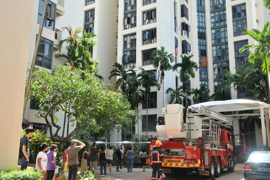 The SCDF extinguished the fire using one water jet. The fire involved the contents of a living room.