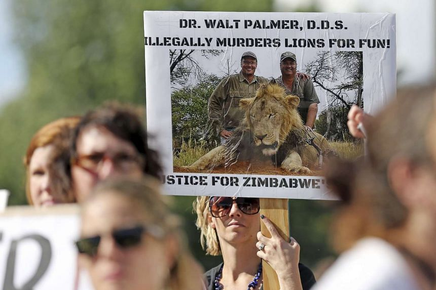 Protesters hold signs during a rally outside the River Bluff Dental clinic against the killing of a famous lion in Zimbabwe, in Bloomington, Minnesota on July 29, 2015.