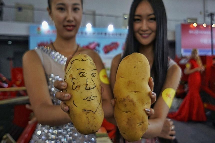 Exhibitors displaying potatoes at the World Potato Congress in Beijing. China has begun to promote the potato as a substitute foodstuff for grain.
