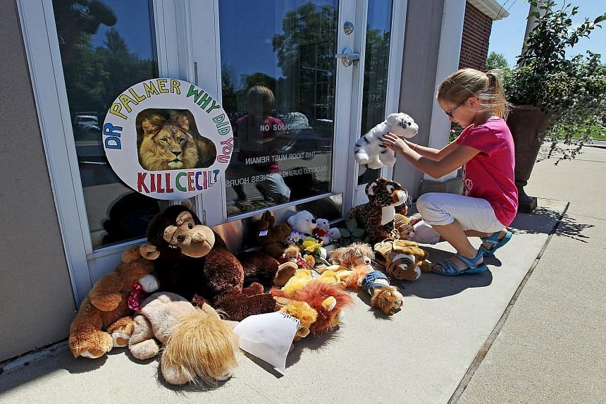 Resident Autumn Fuller, 10, leaving a stuffed animal in the doorway of Dr Walter Palmer's dental office near Minneapolis on Wednesday. Dr Palmer became a villain at the centre of a virtual firestorm over the ethics of big-game trophy hunting after he