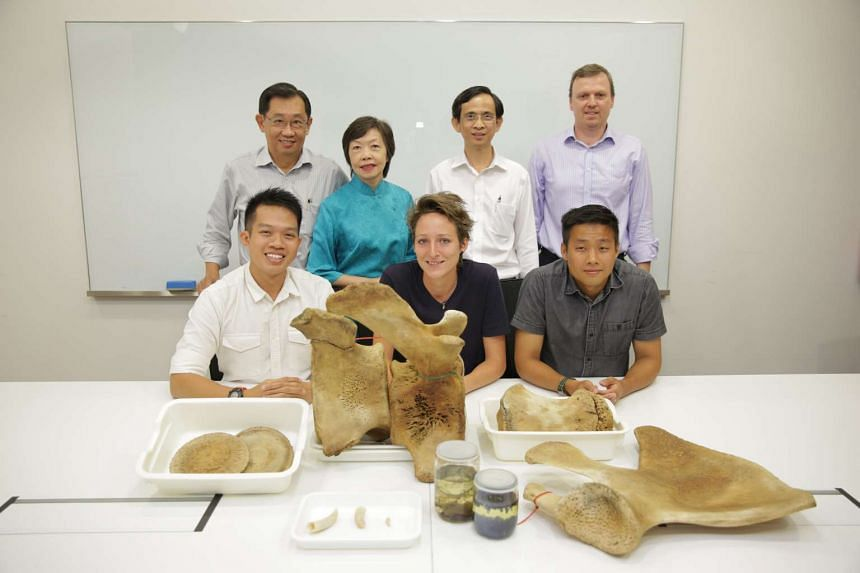 Bottom row (from left): Curator of Cyrogenic Collection Foo Maosheng, Conservator Kate Pocklington,  Curator of Mammals and Birds Marcus Chua. Top row (from left): Mr Joseph Koh, 66, Ms Peifen Koh, 65, Deputy General Manager of Expand Construction Ed