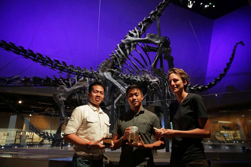(From left) Mr Foo Maosheng, Mr Marcus Chua, and Ms Kate Pocklington are part of the team putting together the whale's remains for the museum.