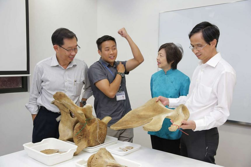Mr Marcus Chua (second, left) explaining the science behind the whale's remains.