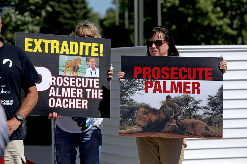 Protesters call attention to the alleged poaching of Cecil the lion, in the parking lot of Dr Walter Palmer's River Bluff Dental Clinic.