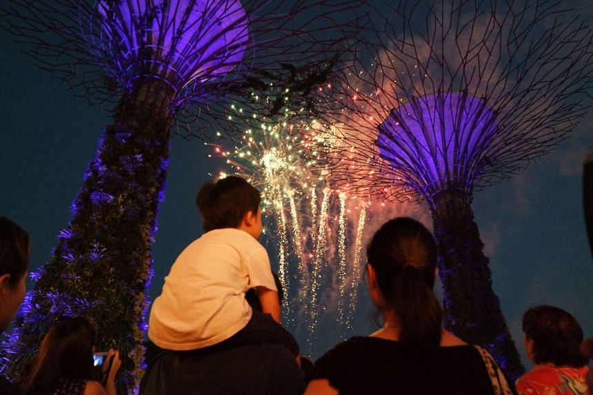 Watch light shows at Gardens by the Bay.