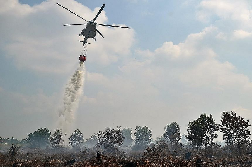 The military will use Super Puma helicopters for water-bombing efforts such as this one in a file photo.