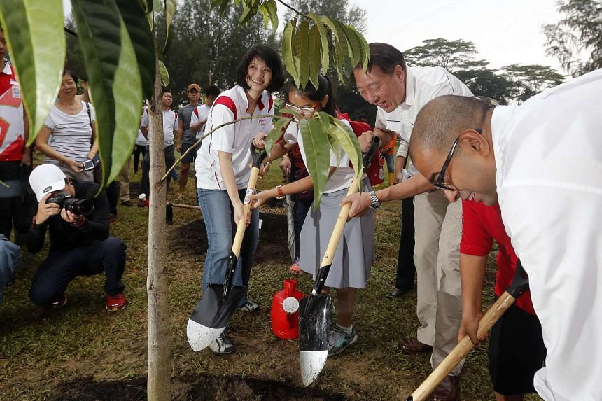 Ms Sun Xueling at the tree-planting event with Deputy Prime Minister Teo Chee Hean (second from right) and MP Janil Puthucheary (right). Ms Sun, a potential PAP candidate, says it is up to the party to decide whether she contests the next general ele