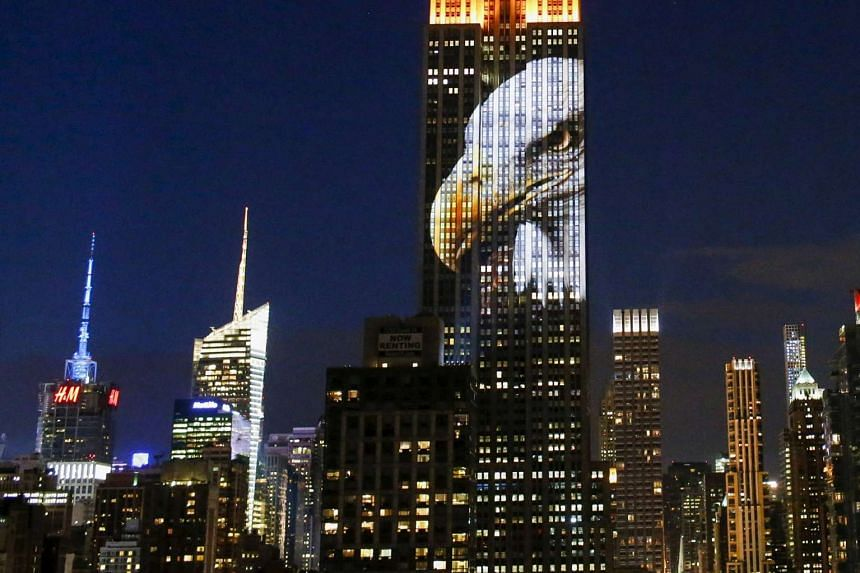 An image of an eagle is projected onto the Empire State Building as part of an endangered species projection to raise awareness, in New York on Aug 1, 2015.