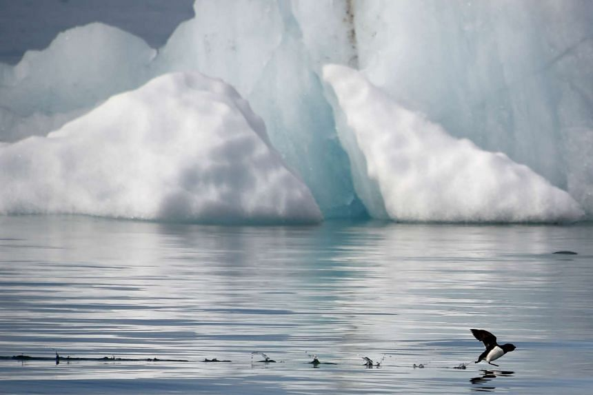 The Arctic has become a theatre for rival claims over a sea floor believed to be rich in minerals, oil and gas.