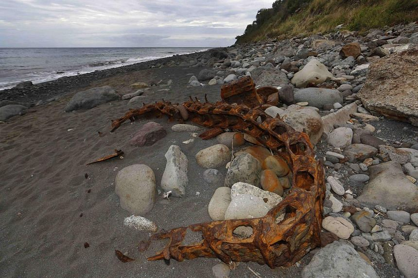 Debris that has washed onto the Jamaique beach in Saint-Denis is seen on the shoreline of French Indian Ocean island of La Reunion, August 3, 2015.