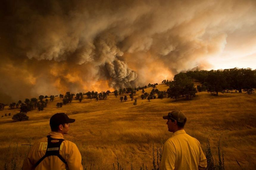 Firefighters watch as the Rocky fire burns near Clearlake, California, on Aug 1, 2015.