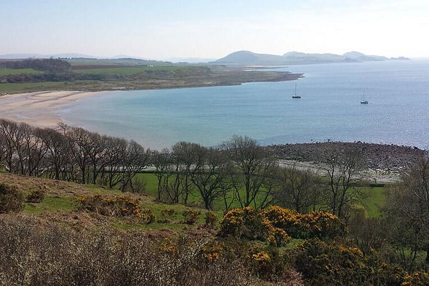 There are many accommodation options on the Isle of Bute (top). To get a close look at seals, head to Scalpsie Bay (left), says storyteller and consultant Sheila Wee. (above).
