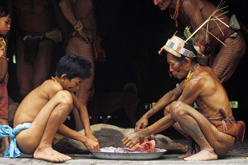 The Mentawaians, an animistic hunter-gatherer people living on the islands, preparing a wild pig they have killed.